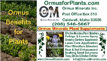 Ormus Minerals business card flowers